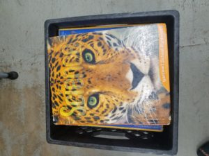 Photo of Life Sciences textbook with cheetah on cover